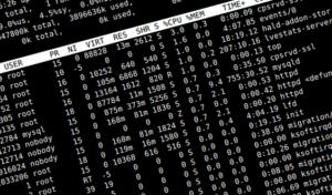 Commandline IP address lookup