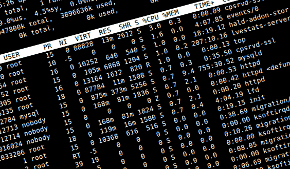 Trace ip address linux command line