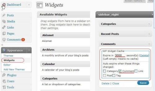 WP Widget Cache - Widget Settings