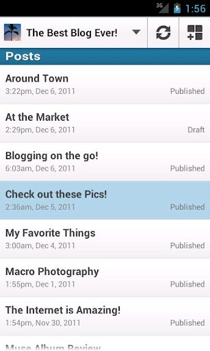 WordPress App - Screenshot 3