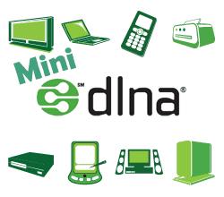 Setup MiniDLNA