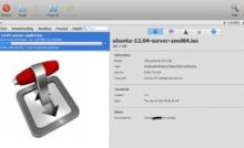 Install Transmission using Docker - BitTorrent Download Client