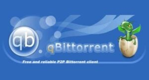 How to install qBittorrent with webui on Ubuntu?