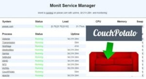 Monit and couchpotato config example