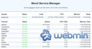 Monit: Monitor Webmin process status