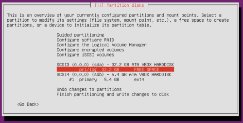 Ubuntu Server Partitioning Guide - Create Drive Partitions