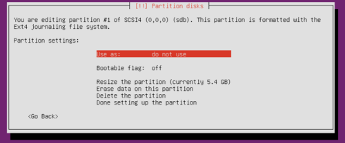 Ubuntu Server Partitioning - Mount Existing Partition Ext4