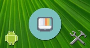 Guide: How to install Terrarium TV on your Android device