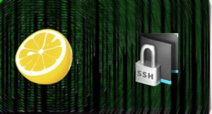 How to connect via SSH from your smartphone using JuiceSSH