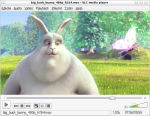 best linux media center software: VLC