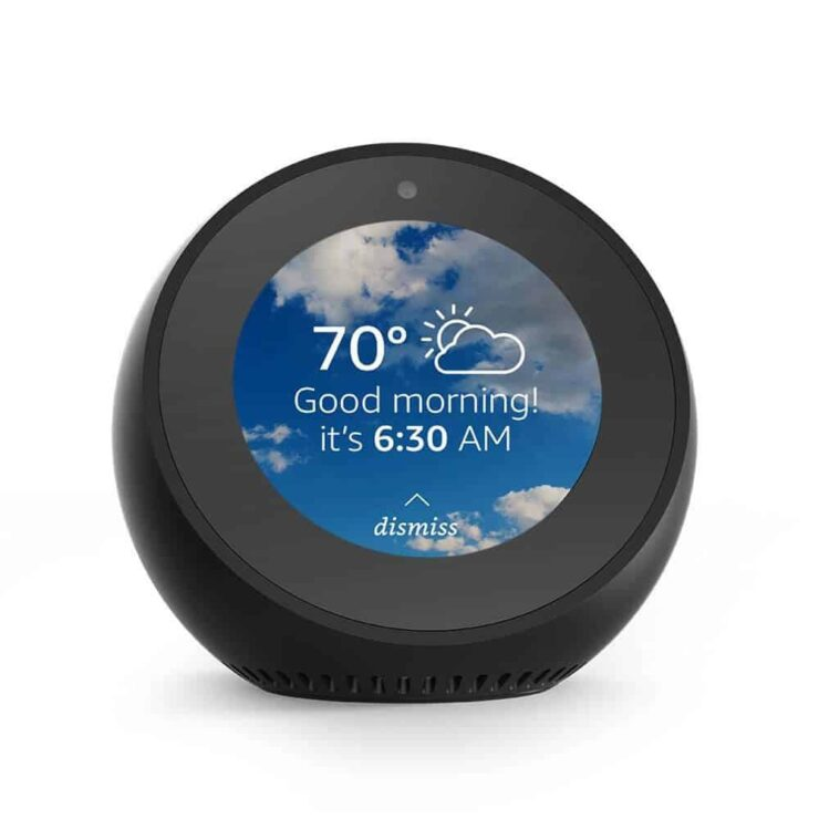 Which Amazon Echo should I buy? - Echo Spot