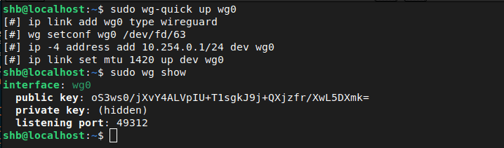 Wireguard Start And Status