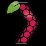 Rasplex logo